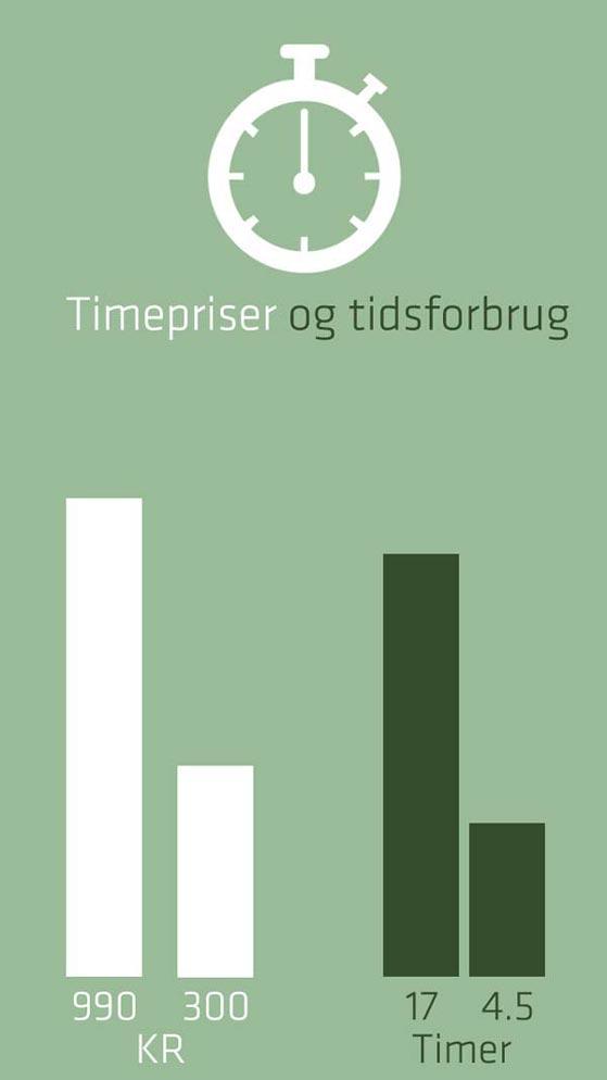 graf med revisor timepris